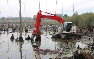 Environmental Cleanup Services